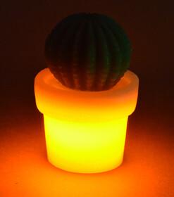 LED Kaktus aus Echtwachs / orange