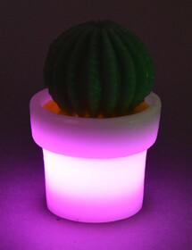 LED Kaktus aus Echtwachs / lila