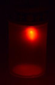 Solar LED Grableuchte mit Dämmerungssensor für 8-10 Std. Leuchtdauer