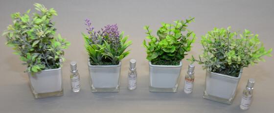 Lufterfrischer als künstliche Pflanze mit 10ml Duftspray in verschiedenen Sorten