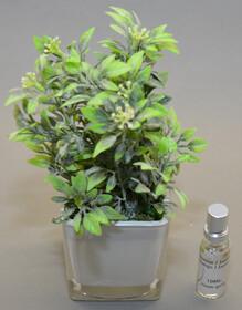 Lufterfrischer als künstliche Pflanze inkl. 10ml...