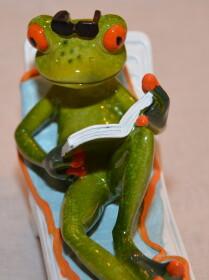 Frosch auf einem Liegestuhl mit Buch